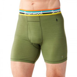 See Merino 150 Pattern Boxer Brief in Green