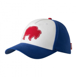 Bison Patch Flex Cap Image
