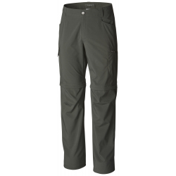 Silver Ridge Stretch Convertible Pant Image