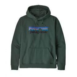 See M's P-6 Logo Uprisal Hoody in Alder Green