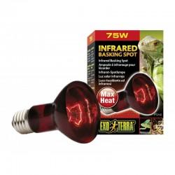 Exo-Terra Heat Glo Infrared Heat Lamp Image