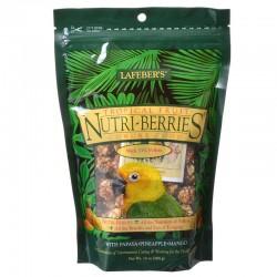 Lafeber Tropical Fruit Nutri-Berries - Conure Food Image