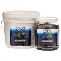 Kent Marine Reef Carbon Image