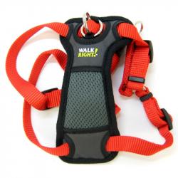 Coastal Pet Walk Right Padded Harness - Red Image