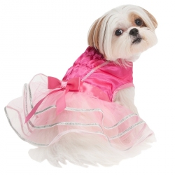 Lookin' Good Ballerina Dog Costume Image