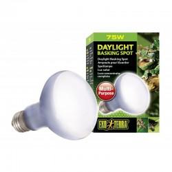 Exo Terra Daylight Basking Spot Lamp Image