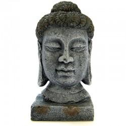 Exotic Environments Oriental Buddha Head Image
