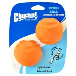 Chuckit Fetch Ball Image