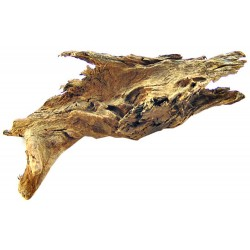 Blue Ribbon Natural Malaysian Driftwood Image