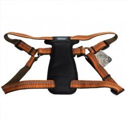 K9 Explorer Reflective Adjustable Padded Dog Harness - Campfire Orange Image