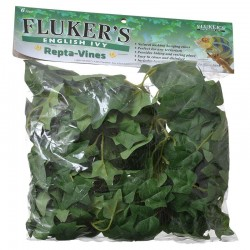 Flukers Repta-Vines - English Ivy Image