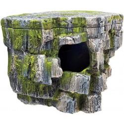 Zilla Rock Cave Image