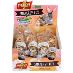 A&E Cage Company Smakers Fruit Sticks for Small Animals Image