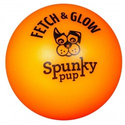 Spunky Pup Fetch and Glow Ball Dog Toy Assorted Colors Image