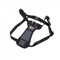 Coastal Pet Walk Right Padded Dog Harness - Black Image