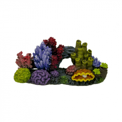Exotic Environments Great Barrier Reef Aquarium Ornament Image