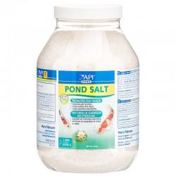 API Pond Pond Salt Image