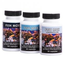 Aquarium bacterial medications for Thomas labs fish mox