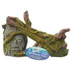 Exotic Environments Moss Covered Ruin & Roots Image