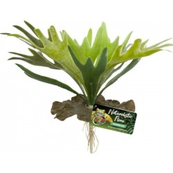 Zoo Med Naturalistic Flora Staghorn Fern Image