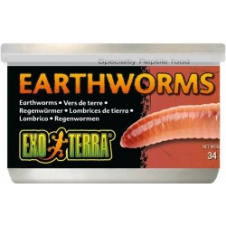 Exo Terra Canned Earthworms Specialty Reptile Food Image