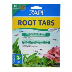 Root Tabs new Image