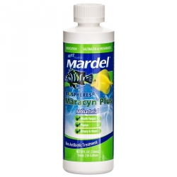 Mardel Maracyn Plus Antibacterial Aquarium Medication - Liquid Image