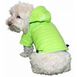 Pet Life Sporty Avalanche Lightweight Dog Coat with Hood - Green Image