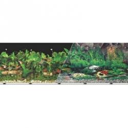 Blue Ribbon Freshwater Black/Tropical Freshwater Double Sided Aquarium Background Image