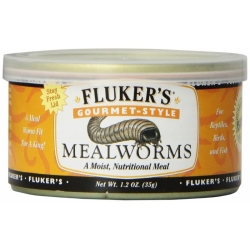 Flukers Gourmet Style Mealworms Image