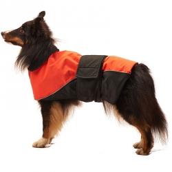 Lookin' Good Waterproof Reflective Dog Coat - Orange Image