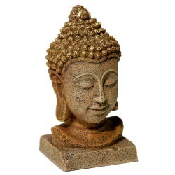Blue Ribbon Exotic Environments Thai Buddha Head Image