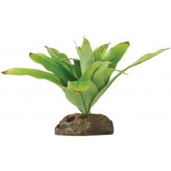 Exo Terra Dart Frog Bromelia Smart Terrarium Plant Image