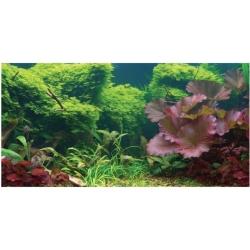 Aquatic Creations Tropical Cling Aquarium Background Image