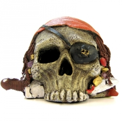 Pirate Skull Ornament Image