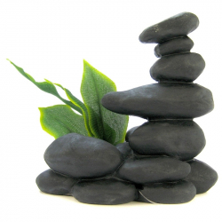 Zen Spa Stones with Plant - Black Image