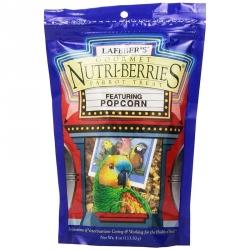 Lafeber Gourmet Nutri-Berries with Popcorn - Parrot Treat Image