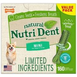 Nylabone Mini Nutri Dent Fresh Breath Dental Chew Treat Mini Image