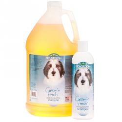 Bio Groom Groom 'n Fresh Shampoo Image