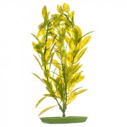 Marina Aquascaper Hygrophila Plant Image