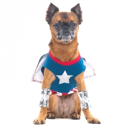 Lookin' Good Superdog Dog Costume Image