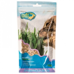 OurPets Cosmic Catnip Kitty Herbs Cat Grass Seeds Image