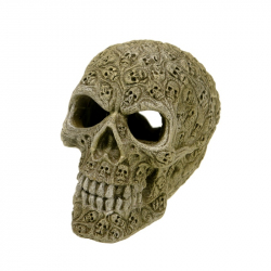 Exotic Environments Haunted Skull Aquarium Ornament Image
