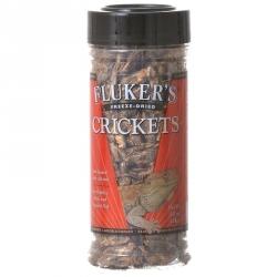 Flukers Freeze-Dried Crickets Image