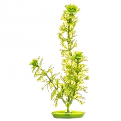 Marina Aquascaper Ambulia Plant Image