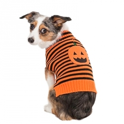 Lookin' Good Striped Pumpkin Dog Sweater Image
