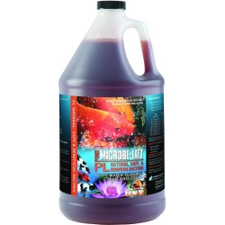 Microbe Lift PL Natural, Safe & Beneficial Bacteria for Ponds Image
