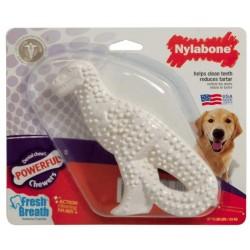 Nylabone Dinosaur Dental Dog Chew Chicken Flavor Image