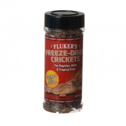 Flukers Freeze-Dried Crickets Image