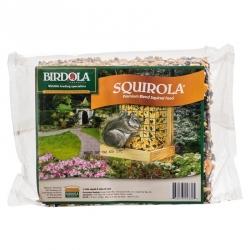 Birdola Squirola Cake Image